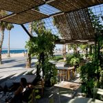 barceloneta-neighborhood-guide